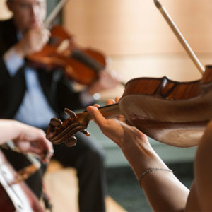 Walden Chamber Players, Concert at the Points